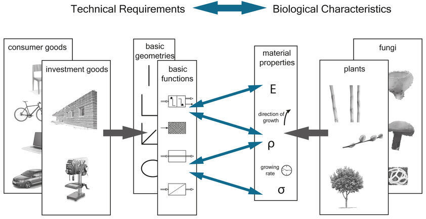The database links technical requirements to biological characteristics