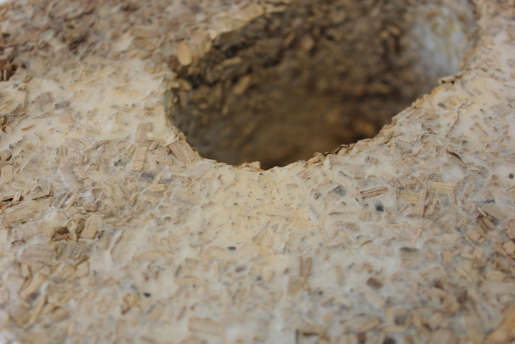 prototype of a mycelium brick on a wood chip substratum